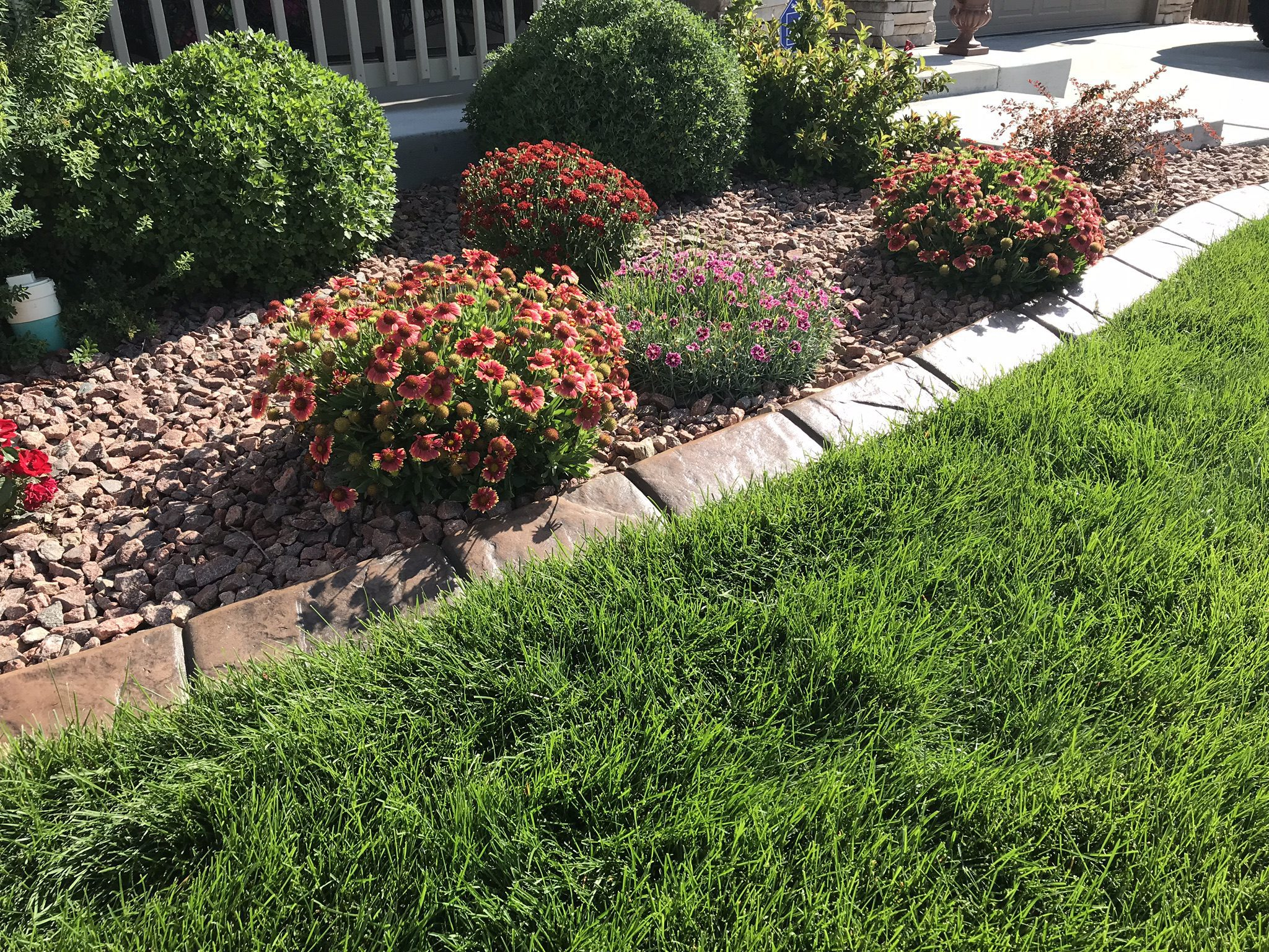 Concrete Edging for your front yard