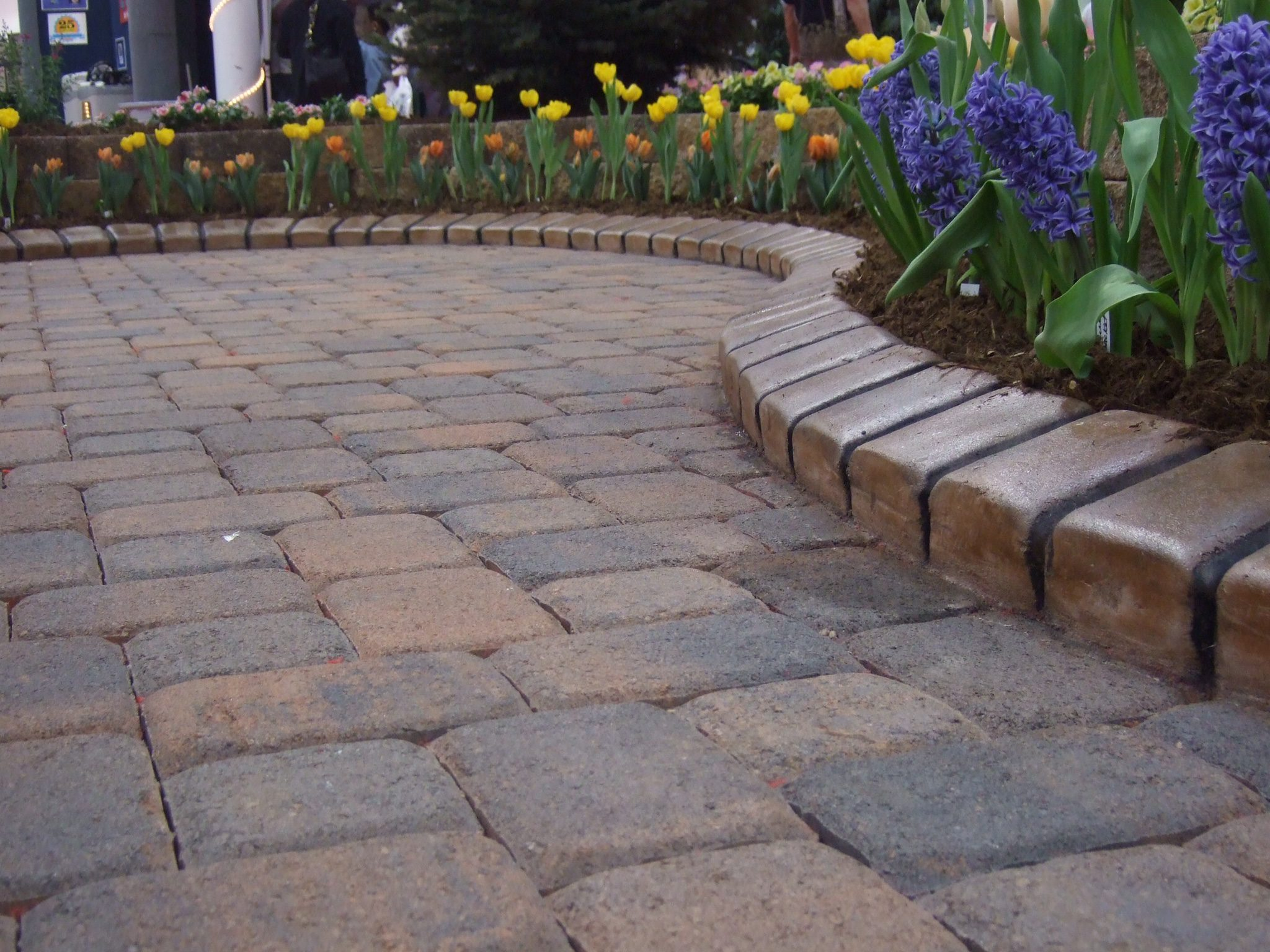 Decorative concrete curbing patterns and colors